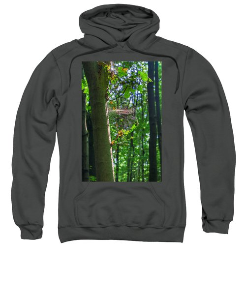 Spider Web In A Forest Sweatshirt