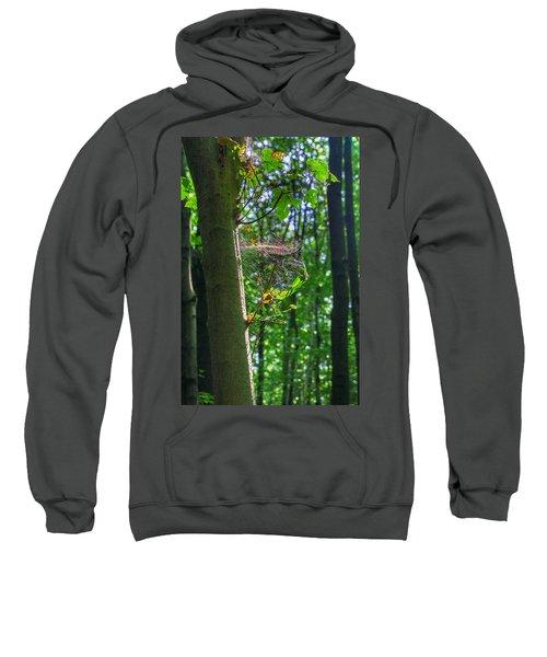 Spider Web In A Forest Sweatshirt