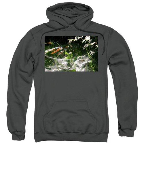 Spiderweb Over Rose Plants Sweatshirt