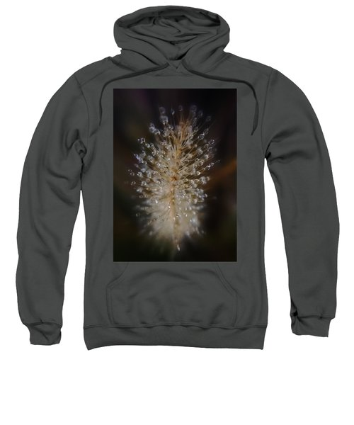 Spiked Droplets  Sweatshirt