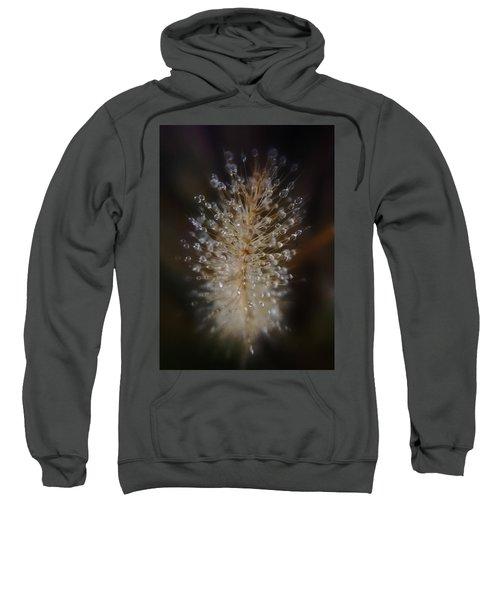 Spiked Droplets  Sweatshirt