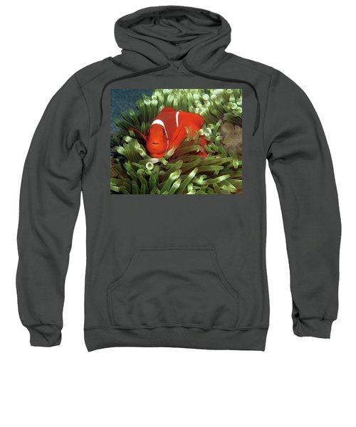 Spinecheek Anemonefish, Indonesia 2 Sweatshirt