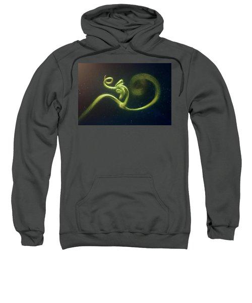 Spiral Sweatshirt