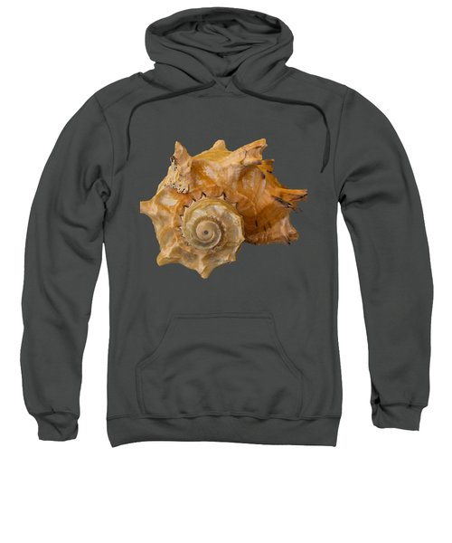 Spiral Shell Transparency Sweatshirt