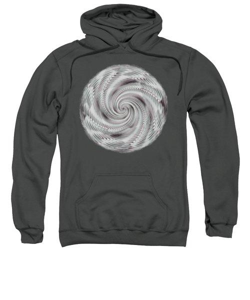 Spiraling Sweatshirt
