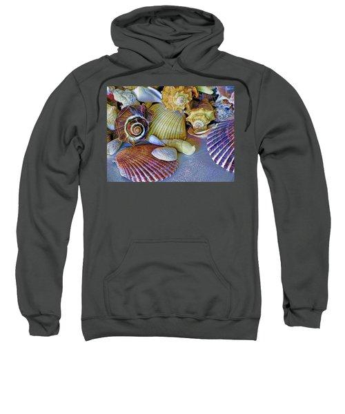 Spirals And Ridges 12 Sweatshirt