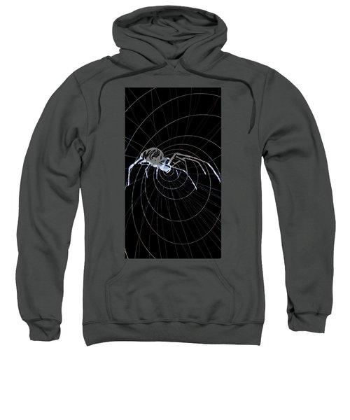 Spirit Animal . Spider Sweatshirt