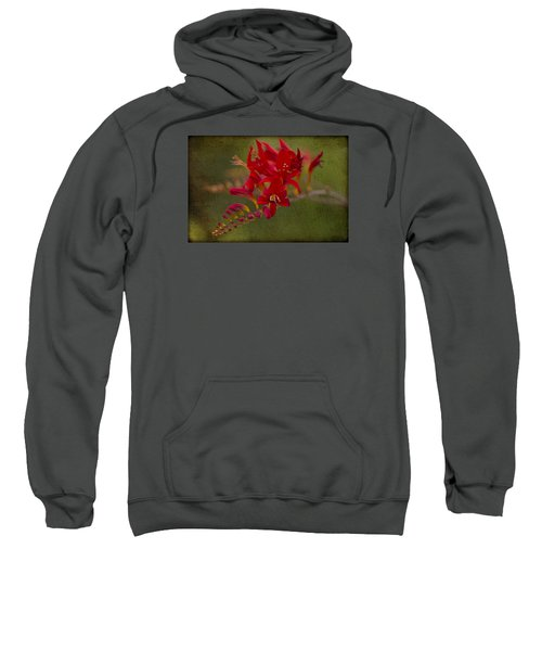 Splash Of Red. Sweatshirt