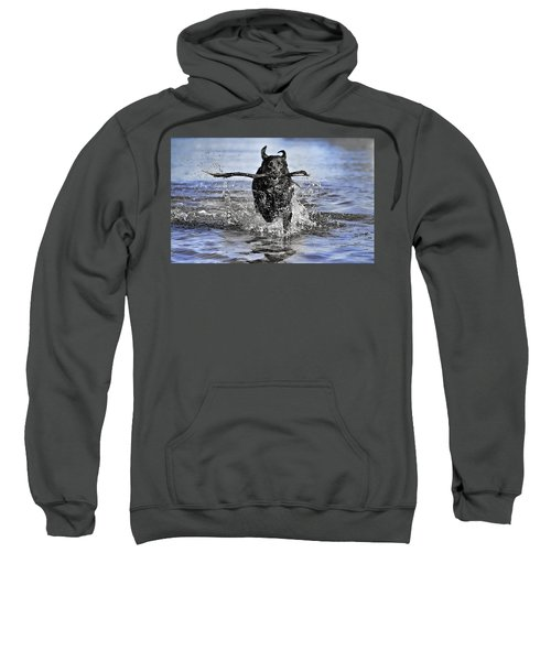 Sweatshirt featuring the photograph Splashing Fun by Chris Cousins