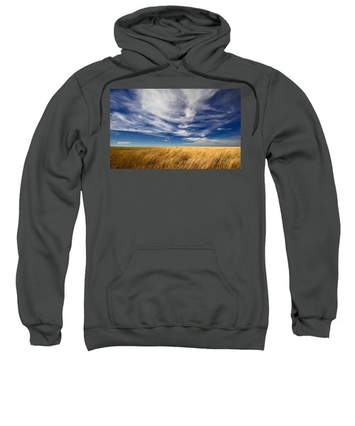 Splendid Isolation Sweatshirt