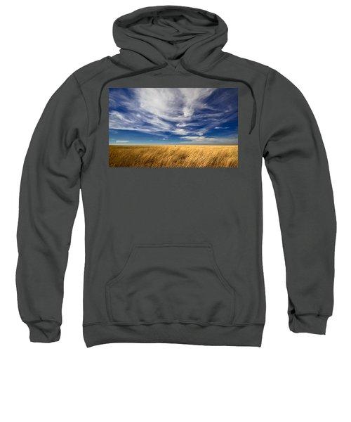 Splendid Isolation Sweatshirt