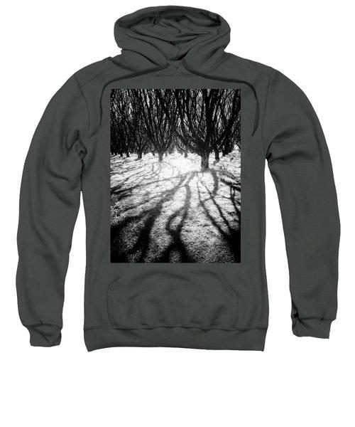 Spooky Forest Sweatshirt