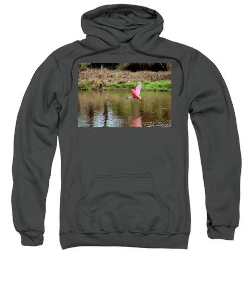 Spoonbill In Flight Sweatshirt