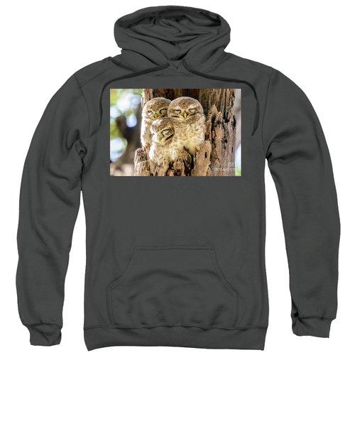 Spotted Owlets Sweatshirt