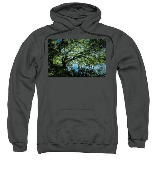 Spreading Oak Sweatshirt
