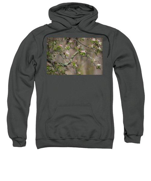 Spring Blossoms 2 Sweatshirt