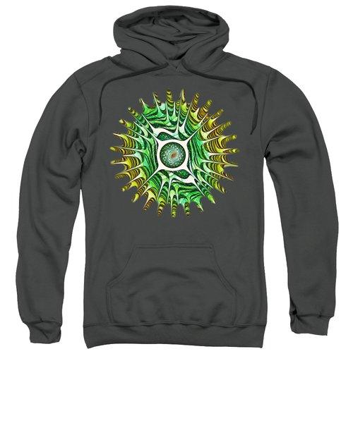 Spring Dragon Eye Sweatshirt