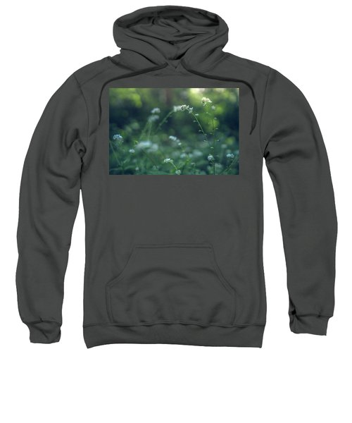 Spring Garden Scene #1 Sweatshirt
