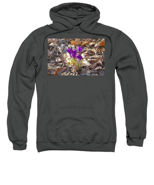 Spring Gathering Sweatshirt