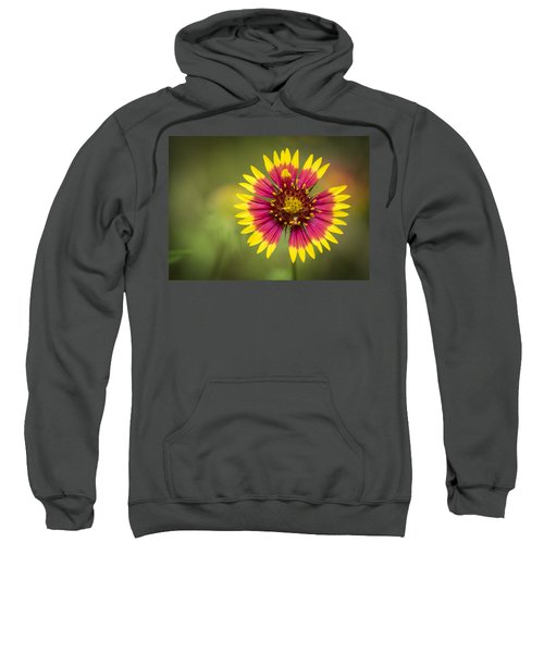Spring Indian Blanket Sweatshirt