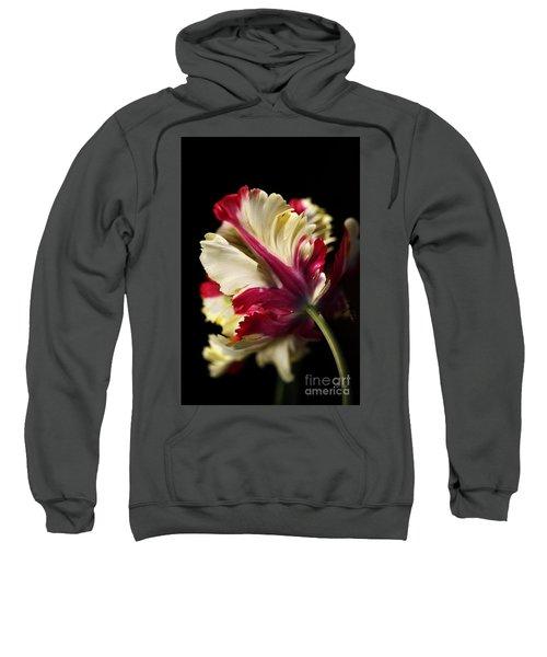 Spring Parrot Tulip Sweatshirt
