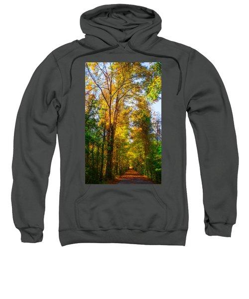 Spring Path Sweatshirt