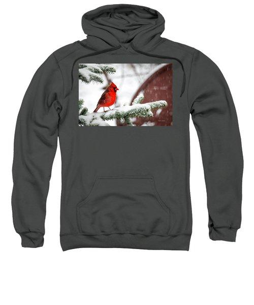 Spring Recess Sweatshirt