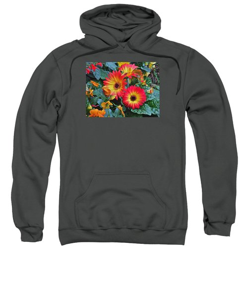 Spring Show 14 Gerbera Daisy 1 Sweatshirt