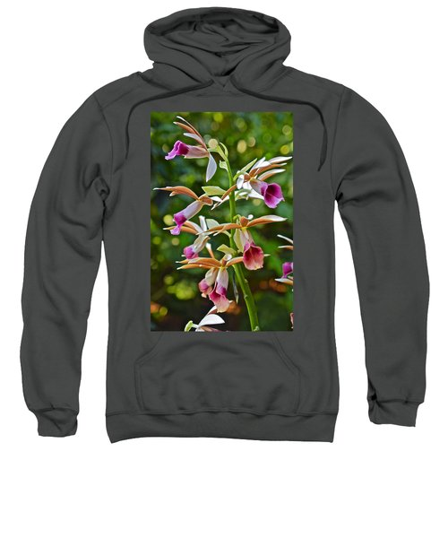 Spring Show 15 Nun's Orchid 1 Sweatshirt