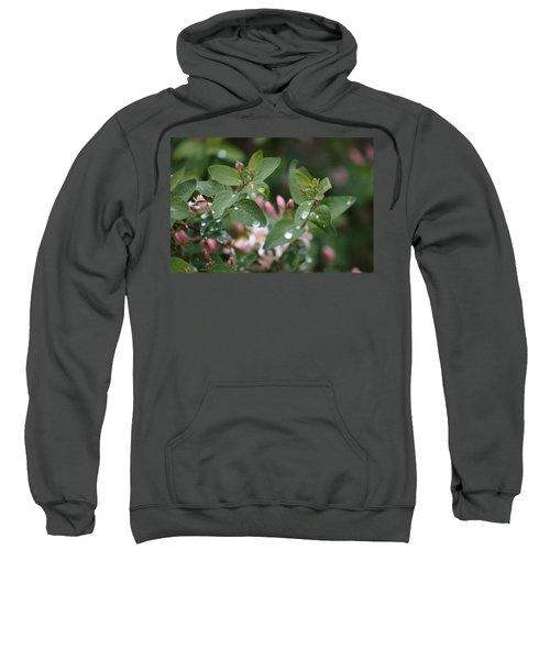 Spring Showers 5 Sweatshirt