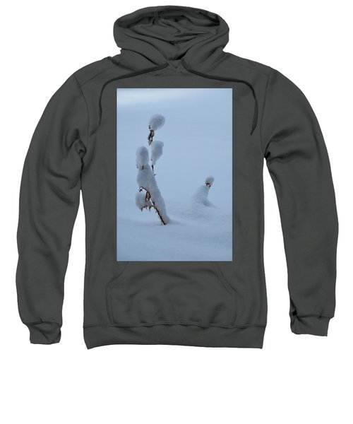 Spring Snow Sweatshirt