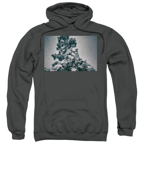 Spring Snowstorm On The Treetops Sweatshirt