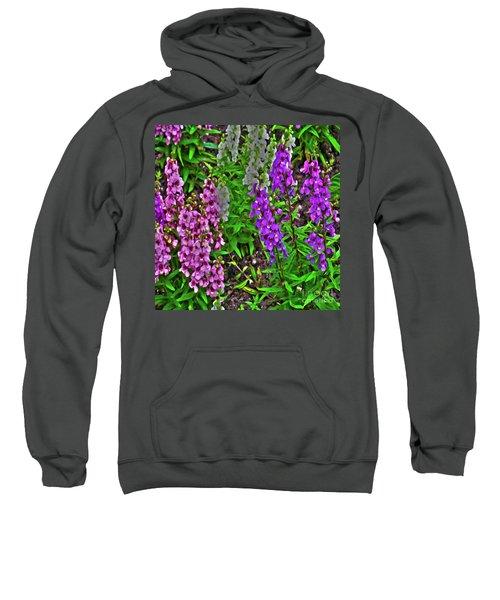 Spring Spring Sweatshirt