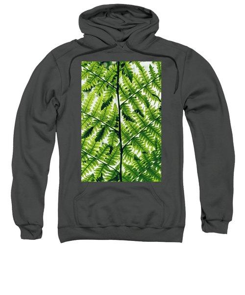 Spring Symmetry Sweatshirt