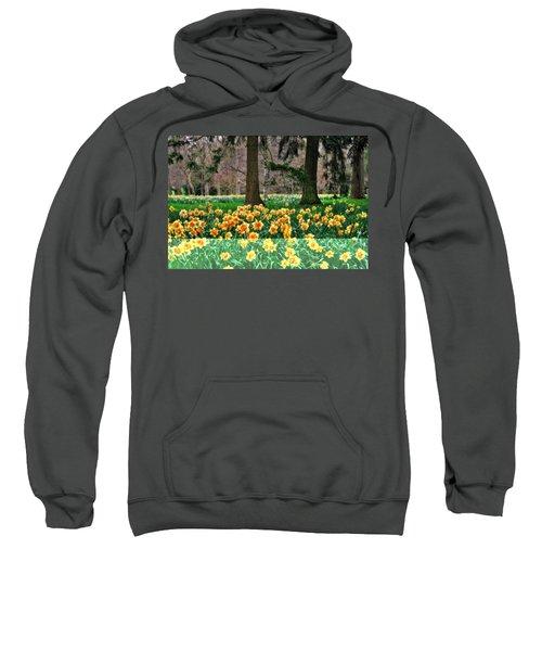 Spring Woodland Daffodils Sweatshirt