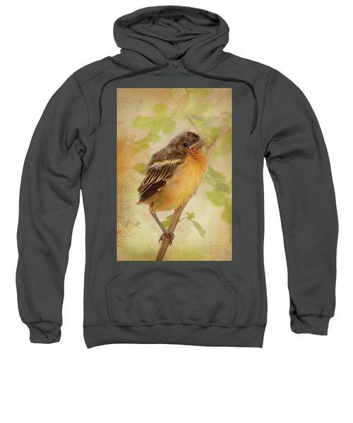 Spring's Sweet Song Sweatshirt