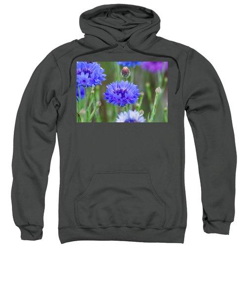 Springtime Blues Sweatshirt