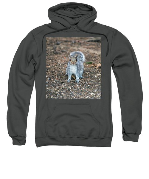 Squriel Full Face Sweatshirt