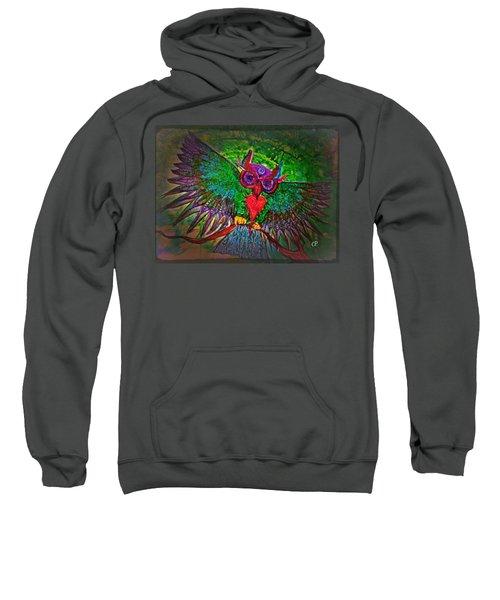 Ss Owl Sweatshirt