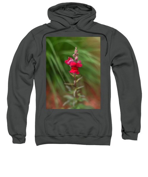 St. Johns Park Flower 872 Sweatshirt