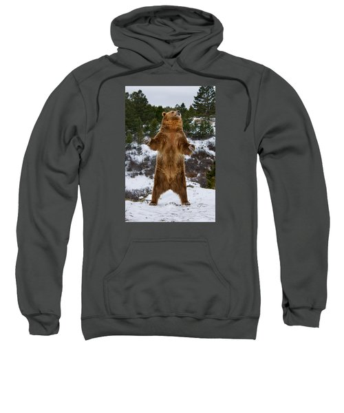 Standing Grizzly Bear Sweatshirt
