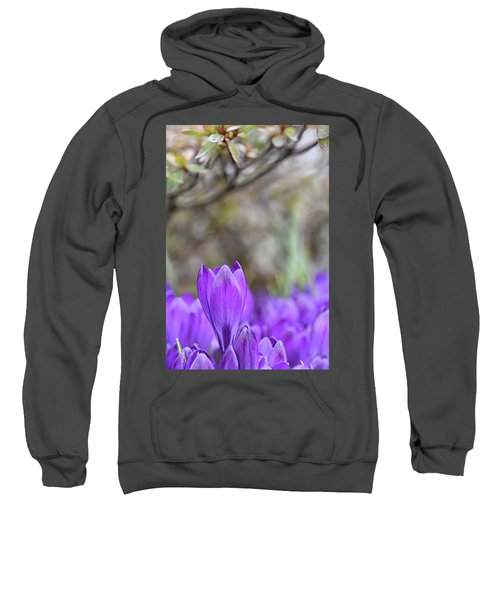 Standing Out From The Crowd Sweatshirt