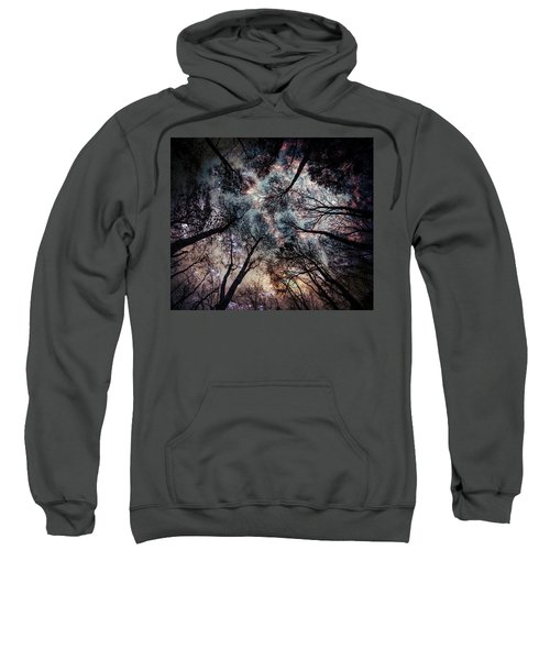 Starry Sky In The Forest Sweatshirt