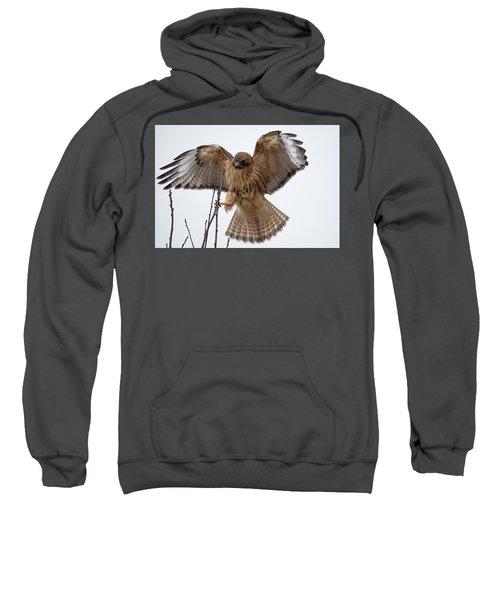 Stick The Landing Sweatshirt