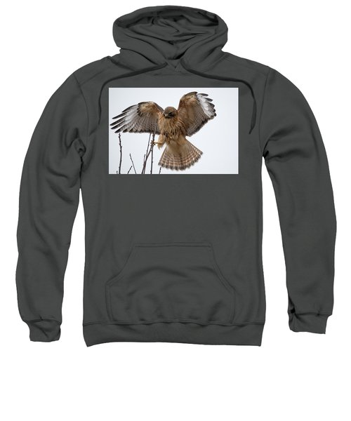 Stick The Landing Sweatshirt