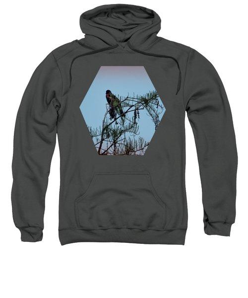 Stillness Sweatshirt by Jim Hill