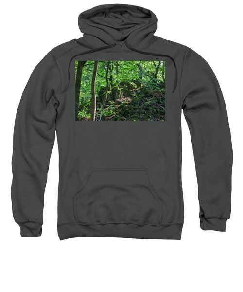 Stones In A Forest In Vogelsberg Sweatshirt