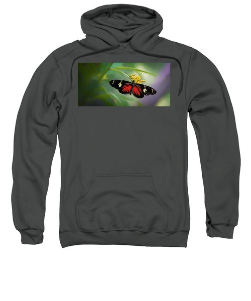 Butterfly, Stop And Smell The Flowers Sweatshirt