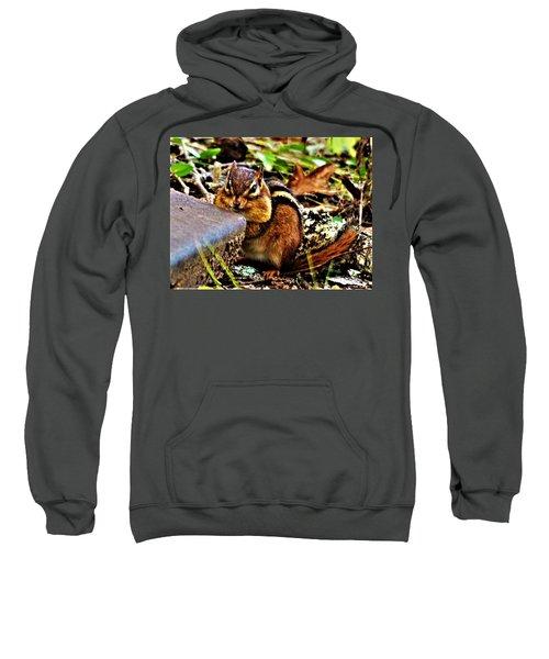 Storing For Winter Sweatshirt