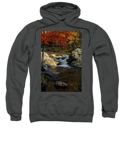 Stream In Autumn No.17 Sweatshirt